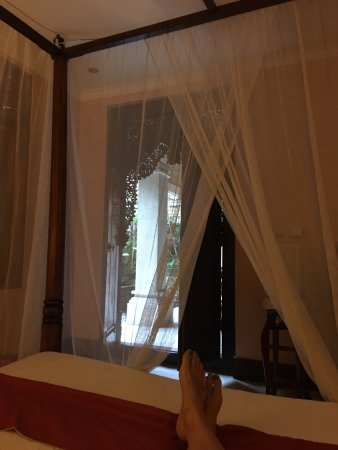Honeymoon Guesthouses Photo