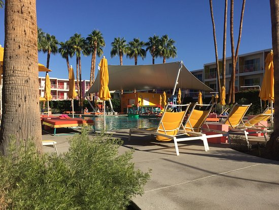 The Saguaro Palm Springs: photo3.jpg