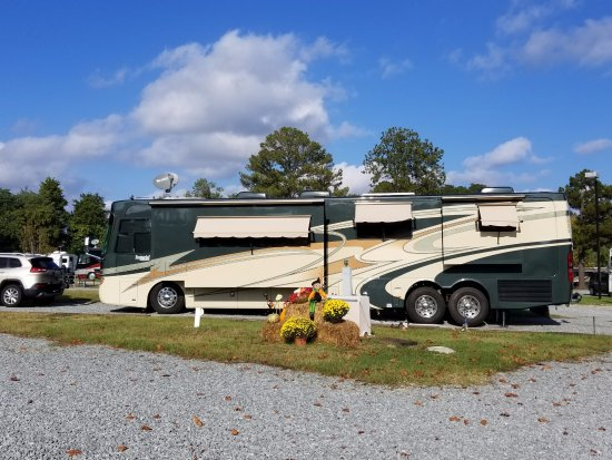 Four Oaks, Carolina del Norte: RV Site