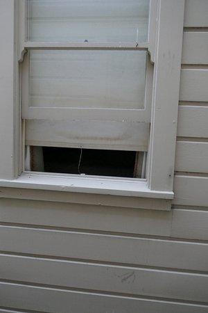 """Stanyan Park Hotel: La finestra di un altro ospite ad un """"palmo """" dalla nostra!!"""