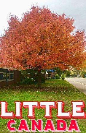 Little Canada, MN: photo0.jpg