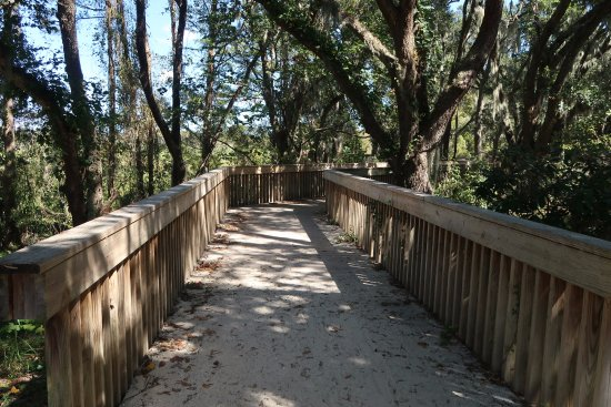 Murrells Inlet, SC: Walkway on the Lowcountry Trail