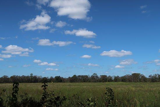 Маррелз-Инлет, Южная Каролина: Lumpkin Ricefield overlook