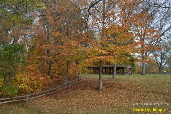 Belleville, MI: Fall Color in Lower Huron Metro Park