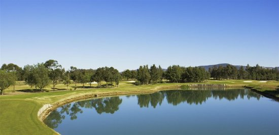 Lovedale, Australia: View from Property, enjoy our extensive resort facilities