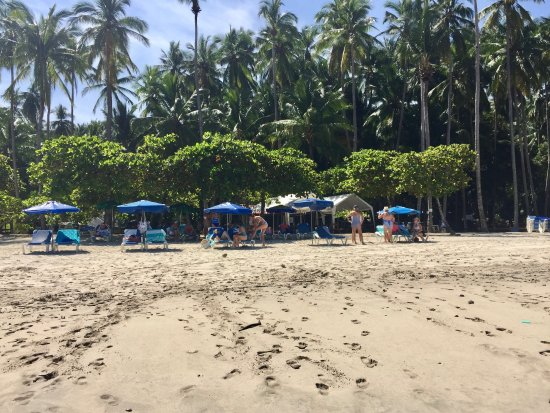 Herradura, Kosta Rika: Private beach & chairs in the shade or sun.