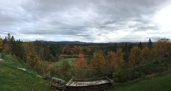Craftsbury Common, VT: View of the land, just outside our room on the first floor (on the back patio)