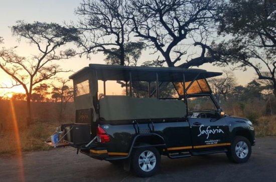 Premium Kruger Park Afternoon Sunset...