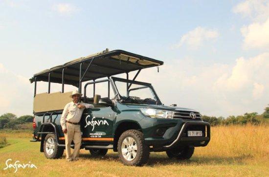Premium Kruger Park Halbtages Safari