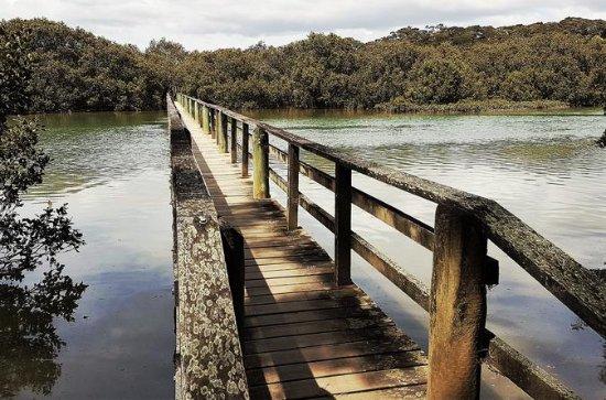 Walk and Paddle Haruru Falls