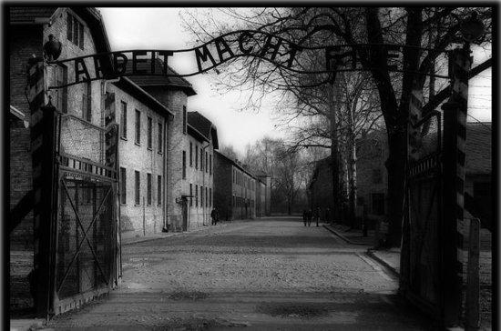 Auschwitz & Birkenau Tour med...