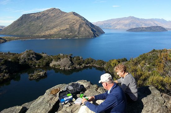 Wanaka Nature Encounter: Lake Cruise...