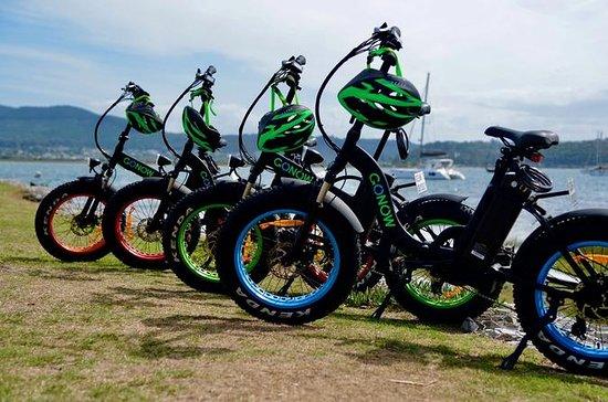 Electric bike hire 1hour