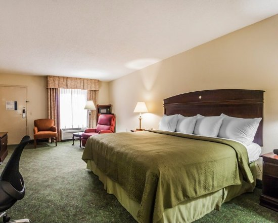 Quality Inn Paris/Ky Lake Area: Guest Room