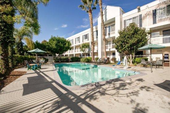 Placentia, CA: Pool