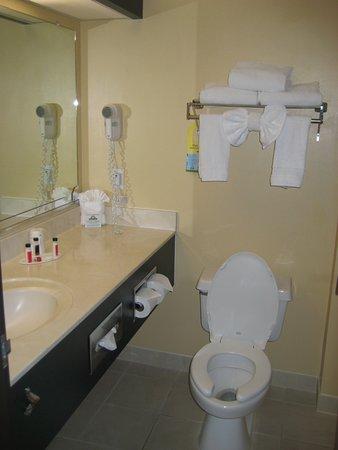 Days Inn & Suites by Wyndham Airport Albuquerque: regular king bath