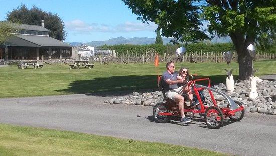 Blenheim, Nieuw-Zeeland: Cruising around the cellar doors