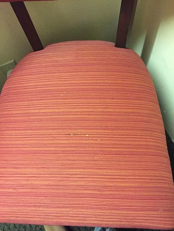 Econo Lodge Greenville: Crumbs on room chair