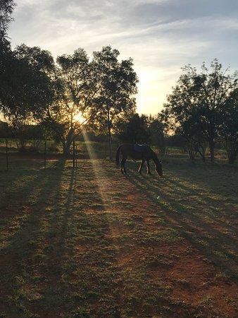 Hartbeespoort, แอฟริกาใต้: photo8.jpg