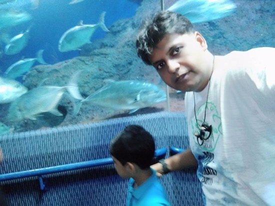 孟臘茫照片