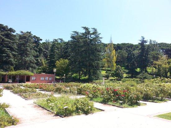 Jardines de la rosaleda madrid jardines de la rosaleda for Jardines 29 madrid