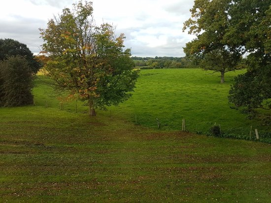 Cranage, UK: View from room