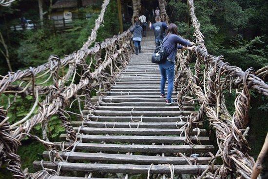 Iya Kazura Bridge: in the bridge