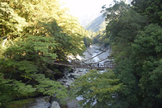 Iya Kazura Bridge: side view