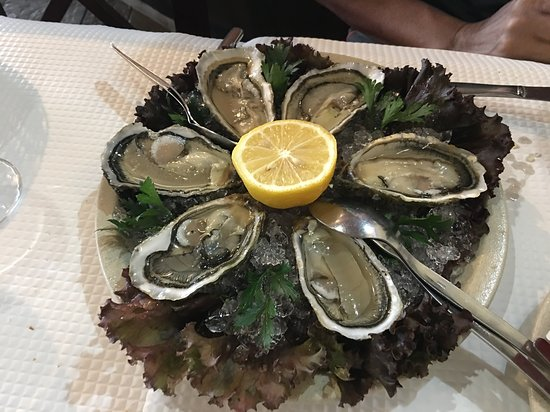 Vila do Bispo, Πορτογαλία: Fresh oysters