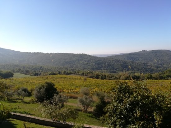 Pergine Valdarno, İtalya: Montelucci Country Resort & Agriturismo di Charme