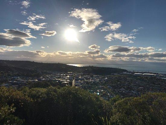 Nelson, New Zealand: photo2.jpg