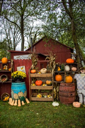 Nappanee, IN: Fall Display