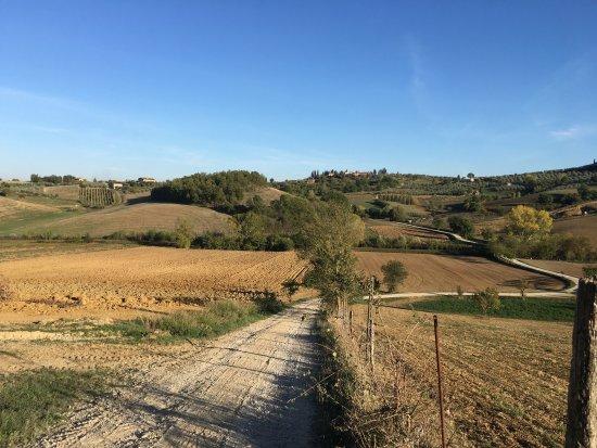 Torrita di Siena, Italy: photo1.jpg