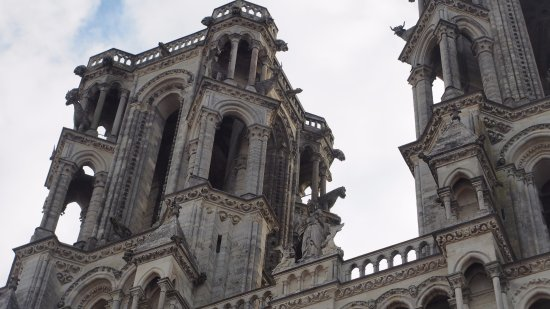Laon, France: Ochsen blicken sie an