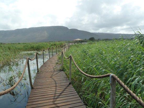 Mkuze, Sudáfrica: photo1.jpg