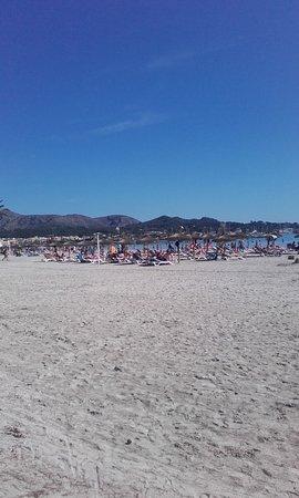 Playas de Alcudia Photo