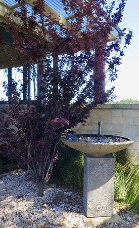 Wilyabrup, Australia: Fountain
