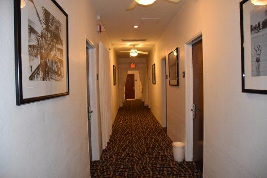 Avalon Hotel: Hallway