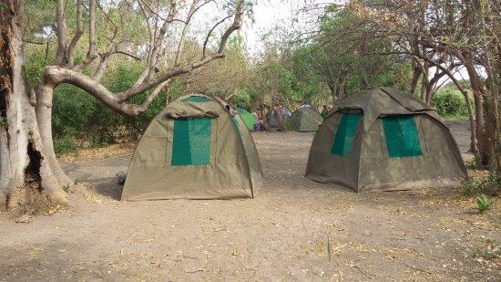 Maun, บอตสวานา: Despues de las canoas acampamos en una isla en el delta.