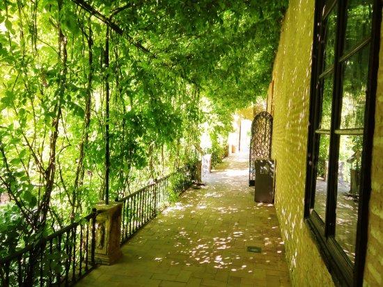 Guias de Sevilla A.U.I.T.S