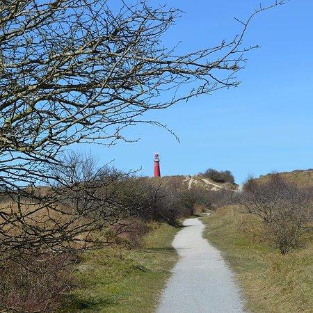 Schiermonnikoog, The Netherlands: Vuurtoren vanuit de duinen