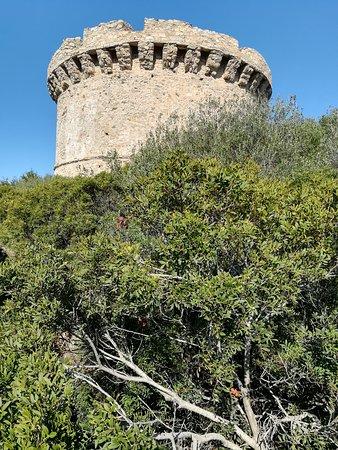 Belvedere-Campomoro