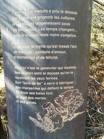 Tour Genoise : IMG_20171016_123500_large.jpg