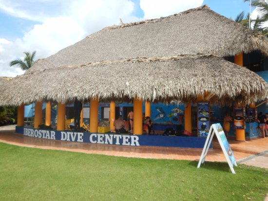 Dressel Divers Bayahibe: Dressel Divers
