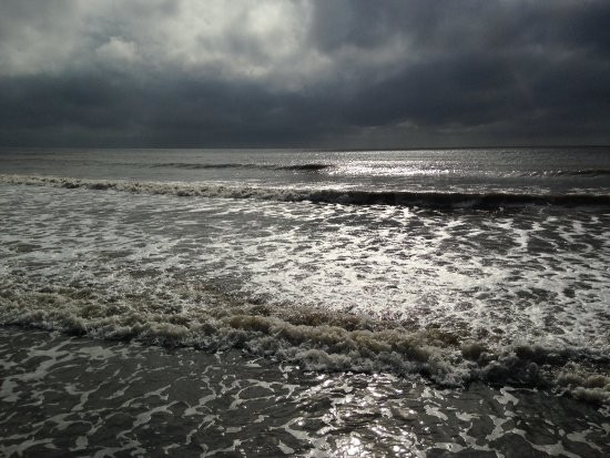 Edisto Island, SC: Ocean