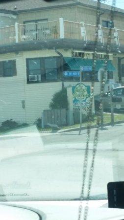 The Sand Dollar Motel Photo