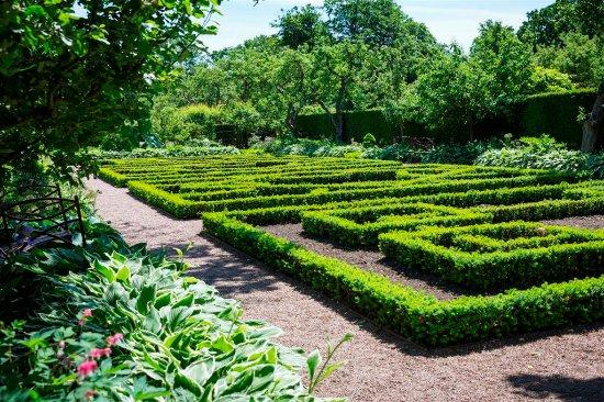 Skåne, Suède : Ogród przy Pałacu Sofiero, fot. Carolina Romare