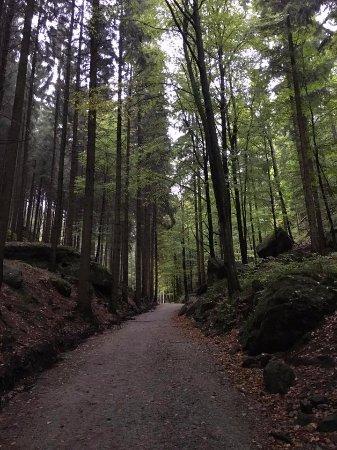 Богемия, Чехия: The hiking trail to Pravcicka Gate