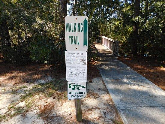 Hardeeville, Νότια Καρολίνα: Yep, they have alligators!