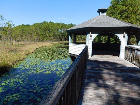 Hardeeville, Νότια Καρολίνα: Gazebo overlooking pond